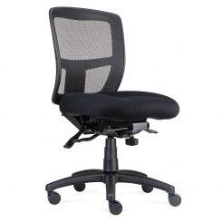 Ergo Office Chair